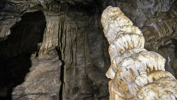 Stalagmites, Columns and Draperies in Han Caverns, Belgium