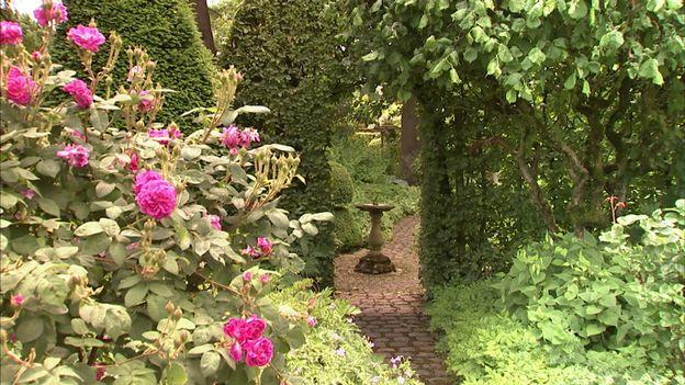 Les roses sont partout présentes dans le jardin
