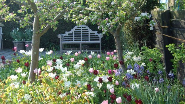Un des jardins de la route des bulbes