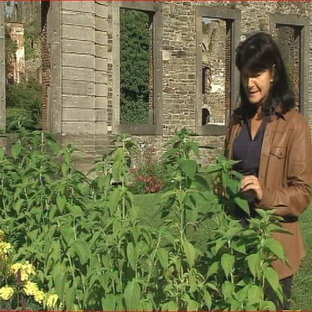 Les jardins de l 39 abbaye de villers la ville rtbf jardins for Les jardins de la ville