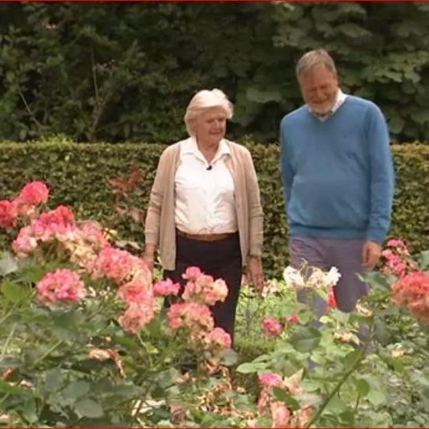 Rita et Luc dans la roseraie