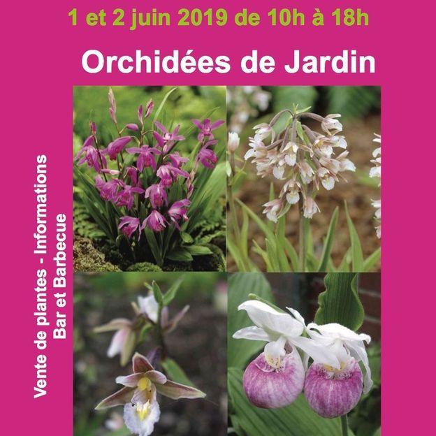 Journées portes ouvertes chez Phytesia, spécialiste des orchidées vivaces
