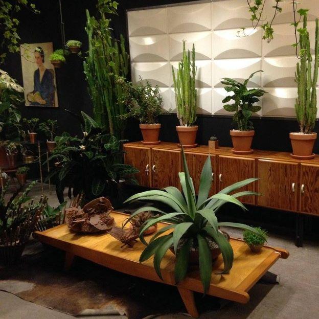 Du mobilier vintage parmi des plantes de seconde main