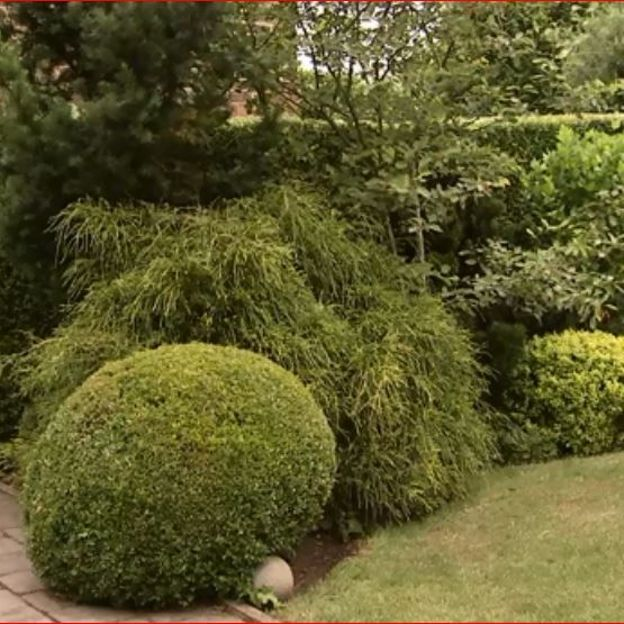 Le jardin de Philippe