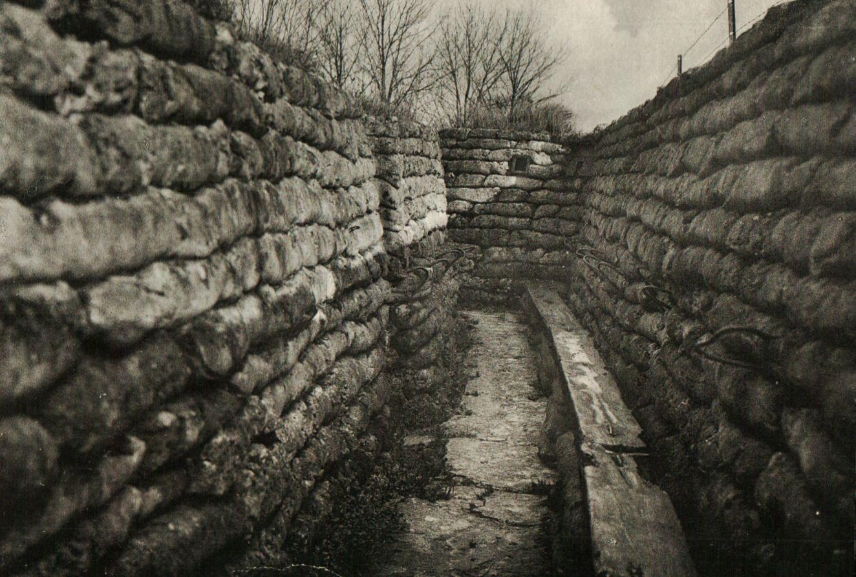 Paysages du front belge les d cors de la vie et la mort - Cuisiner trompette de la mort ...
