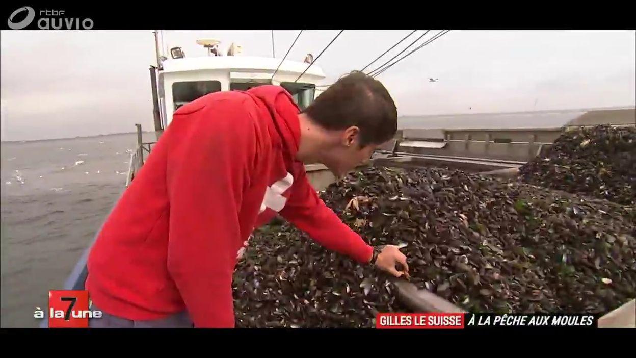 gilles le suisse à la pêche aux moules - 7 à la une - 7 à la une