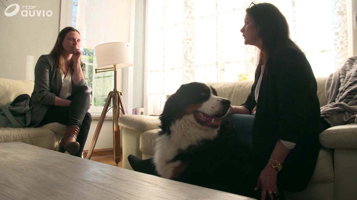 Extrait - Vente de chiens: l'éternelle arnaque ?