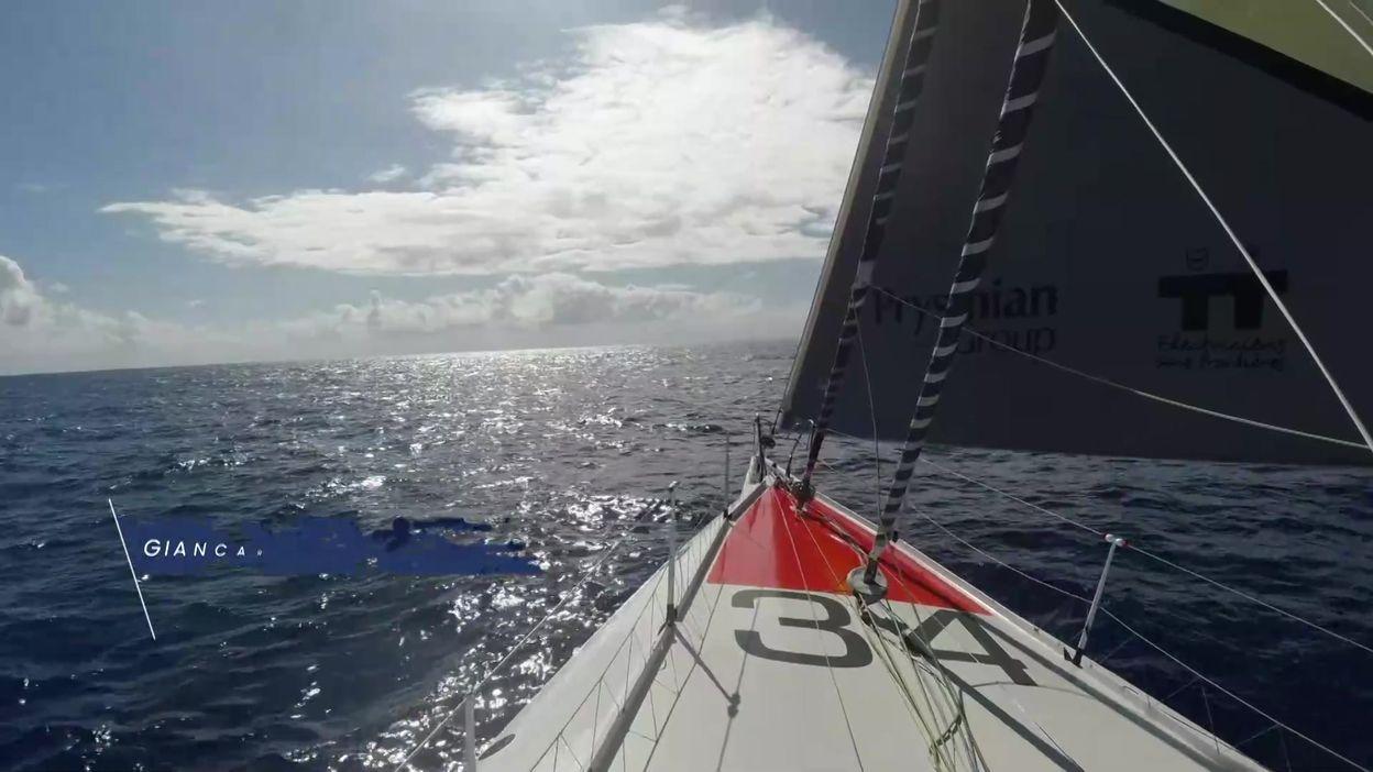 Vendée Globe Jour 8 - 15 novembre