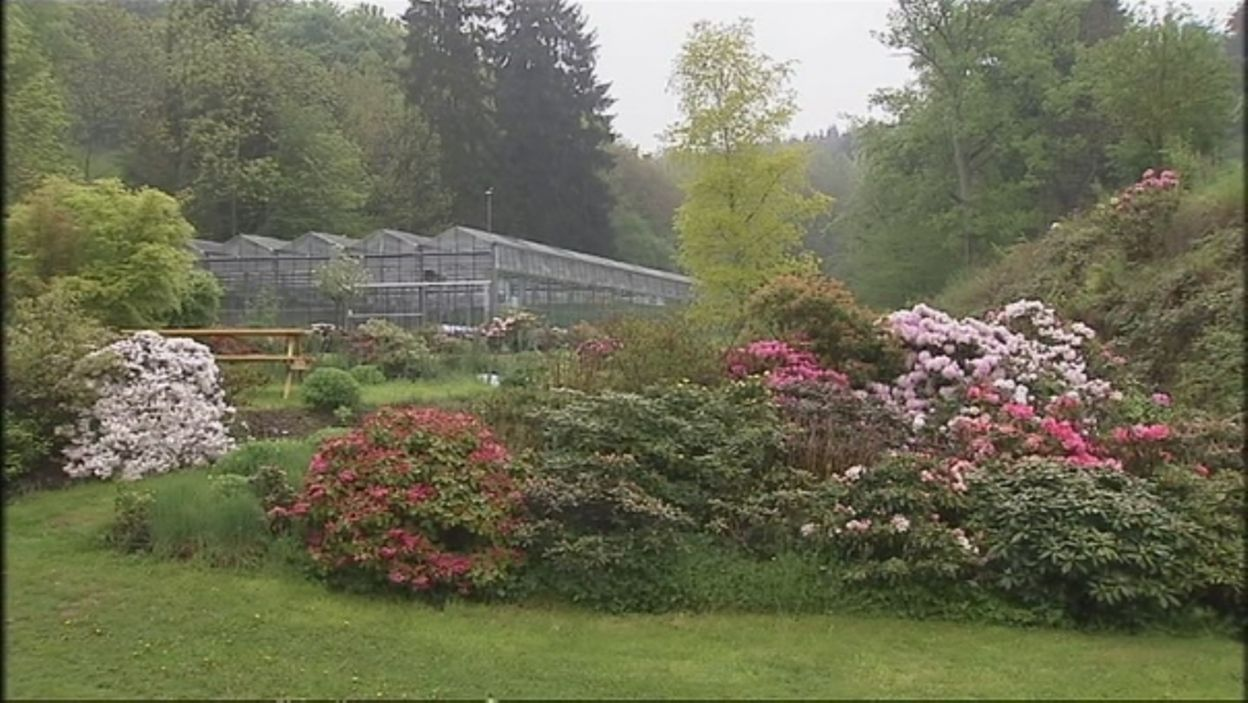 Fleurolex, les artisans du végétal - Extrait de l\'émission jardins ...