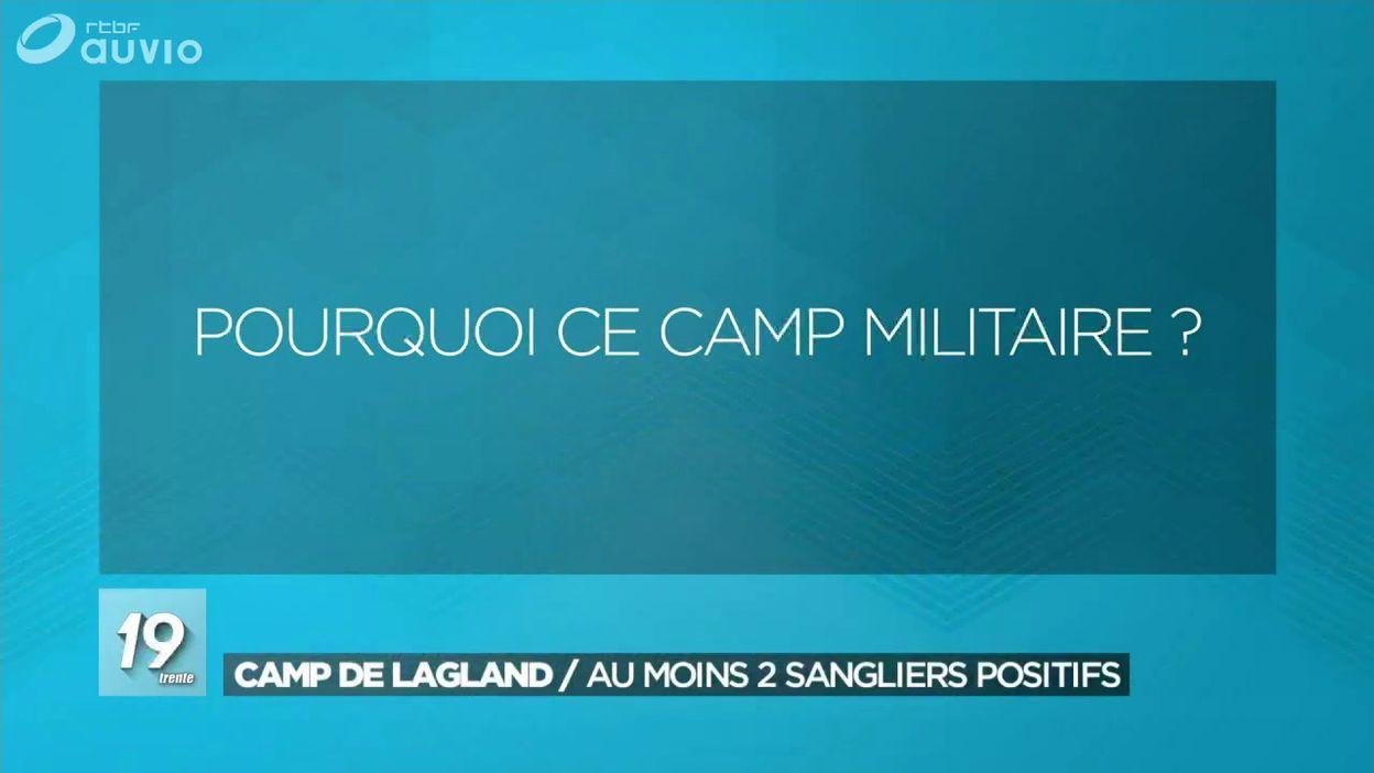 Au moins deux sangliers positifs dans le camp militaire de Lagland