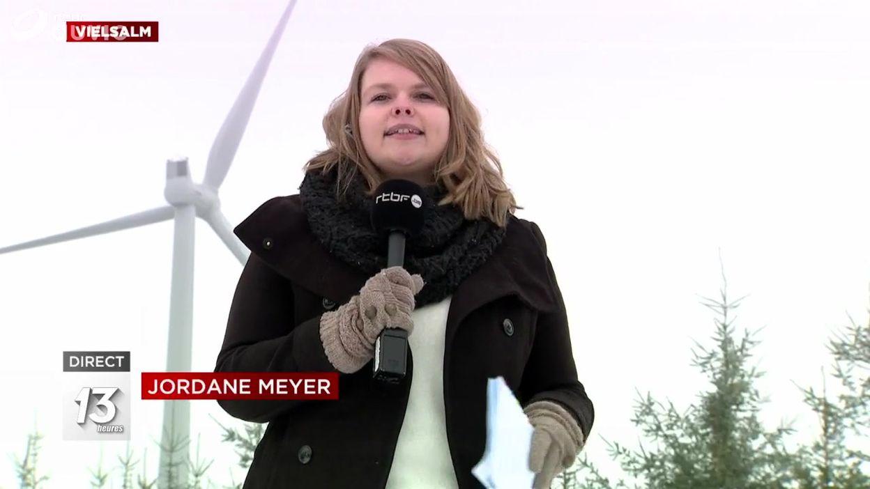 Vielsam : des éoliennes construites dans les bois