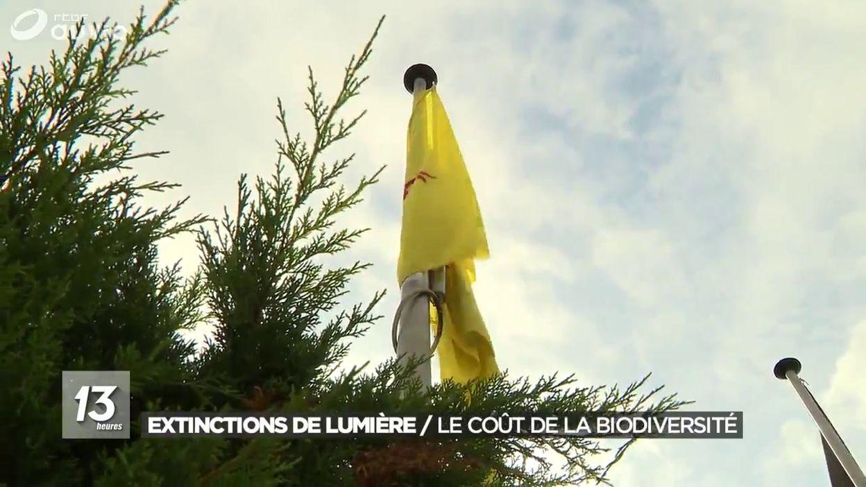 Extinctions de lumière pour la biodivertisé dans des villages