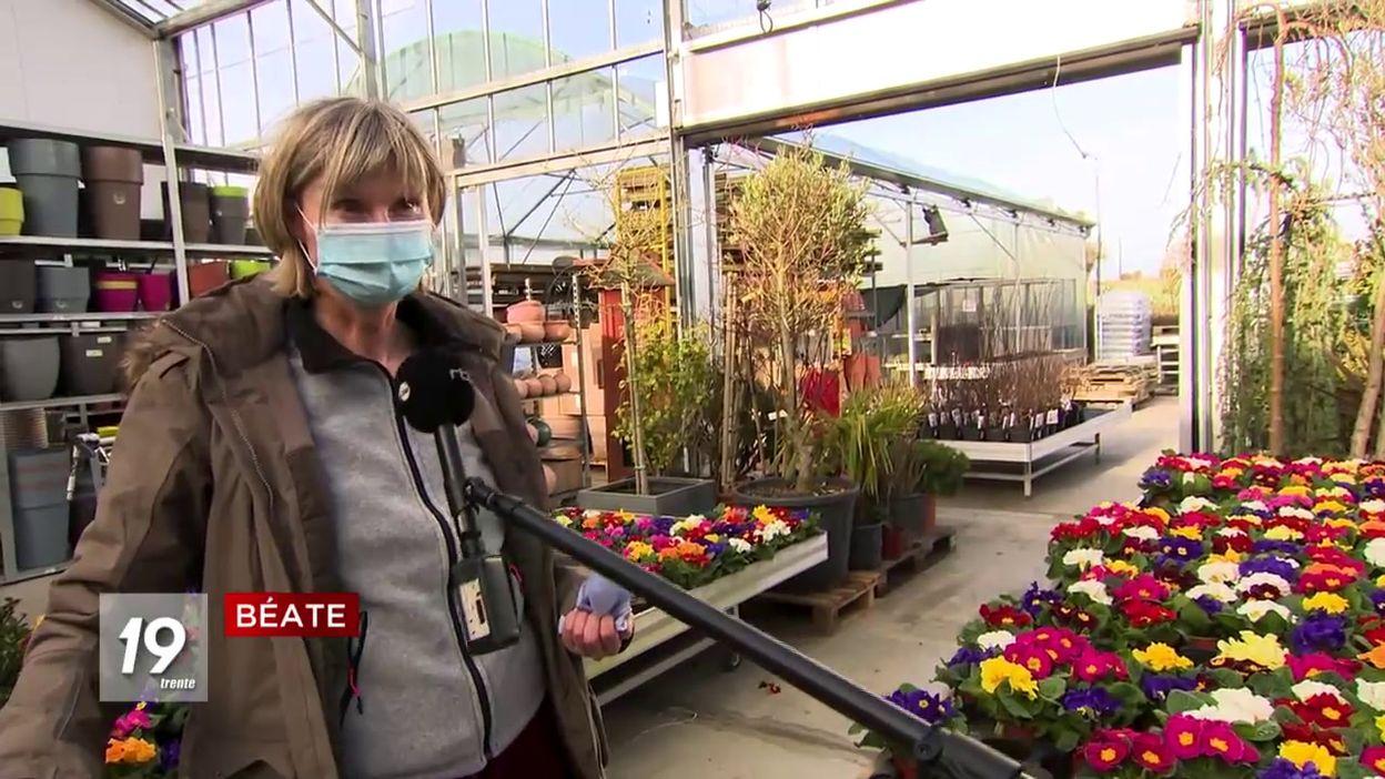 Jardineries :  réveil printanier des mains vertes