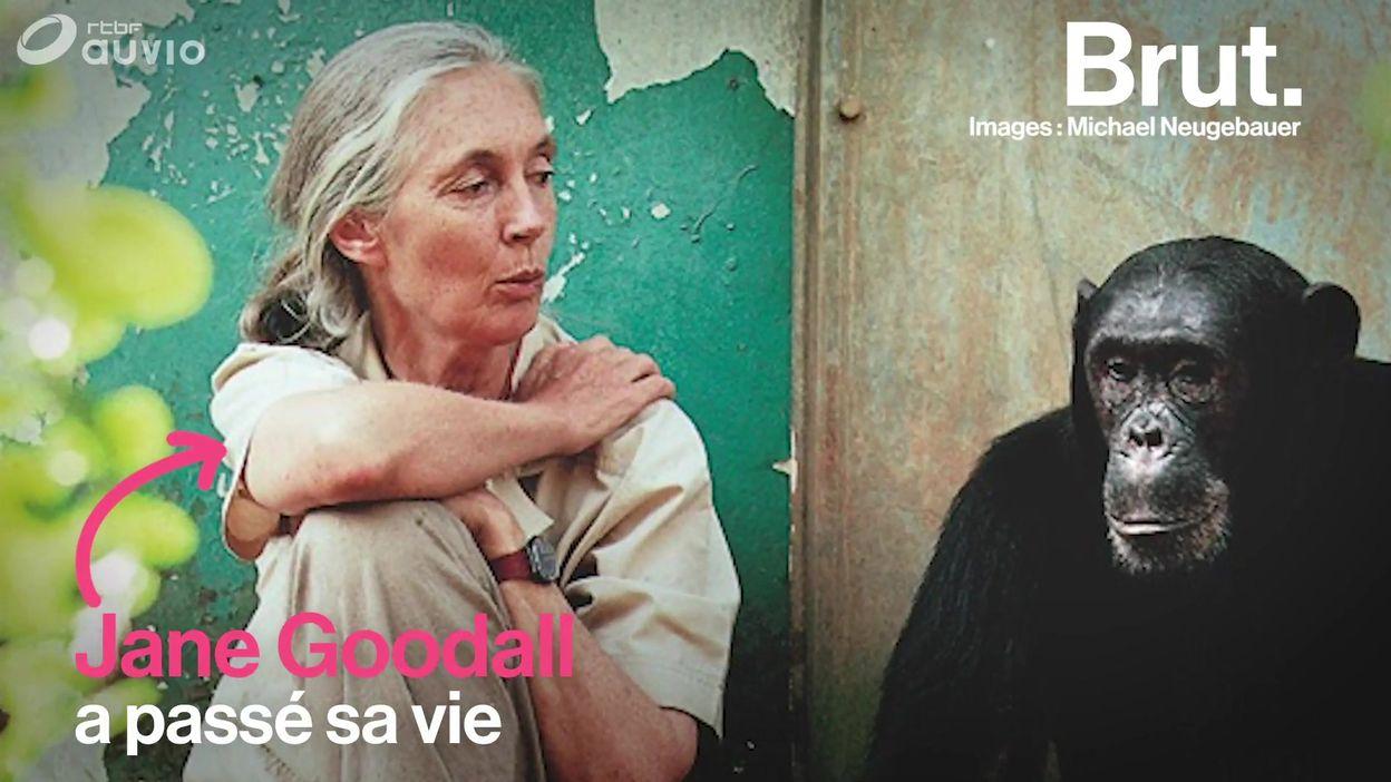 Le message chargé d'espoir de Jane Goodall