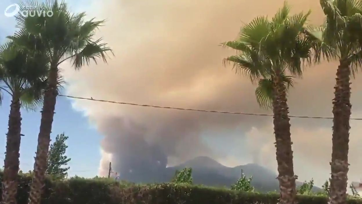 Incendies sur les flancs du Vésuve: images amateur