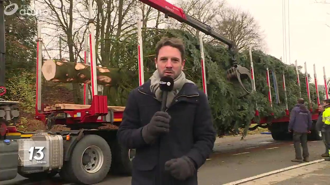 Francorchamps : la découpe de sapin de la Grand-Place de Bruxelles
