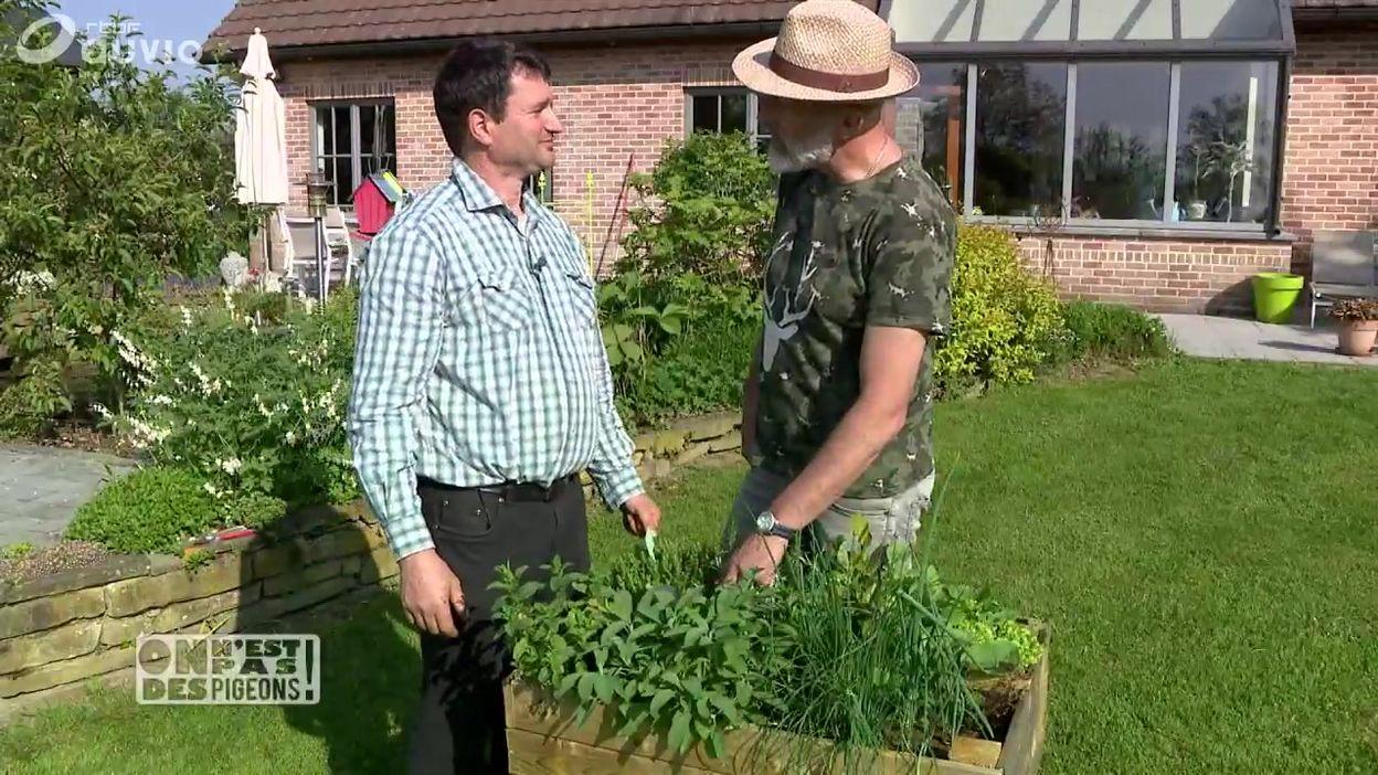 Bons plans jardin: les plantes aromatiques et les graines