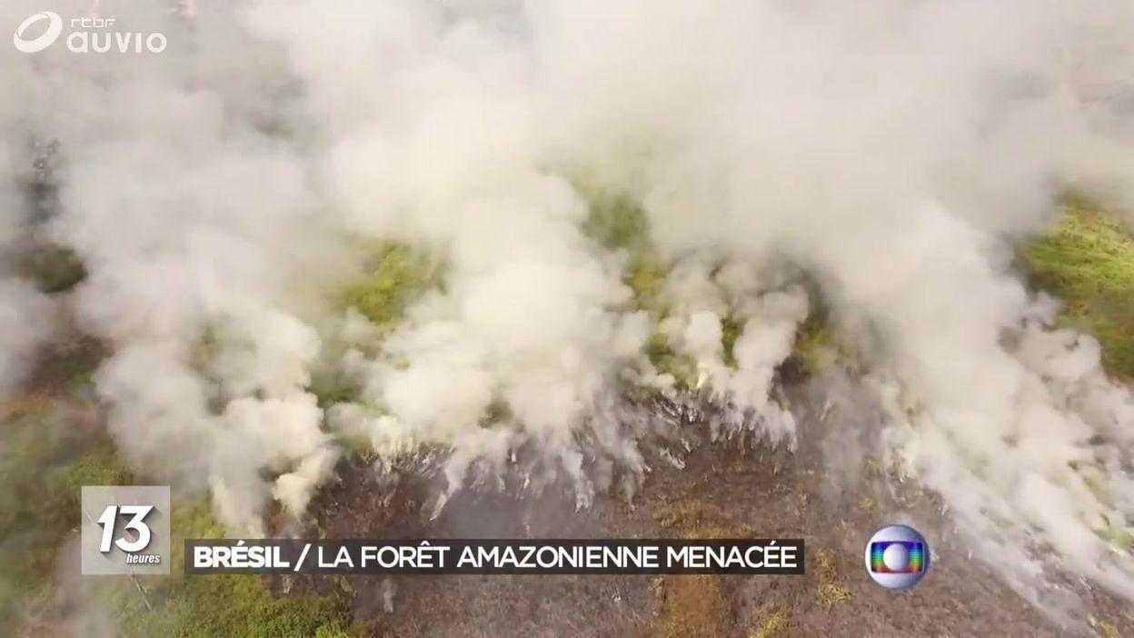 Amazonie : en proie aux flammes