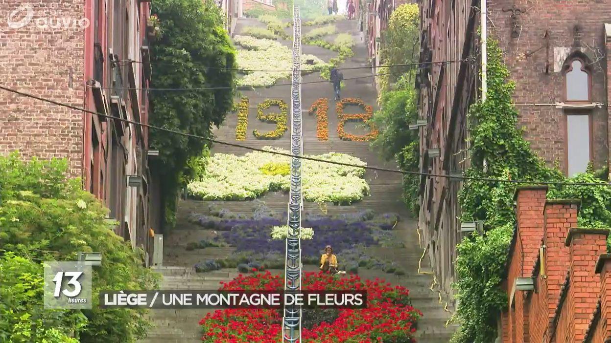Liège : les escaliers de la montagne Bueren en fleurs