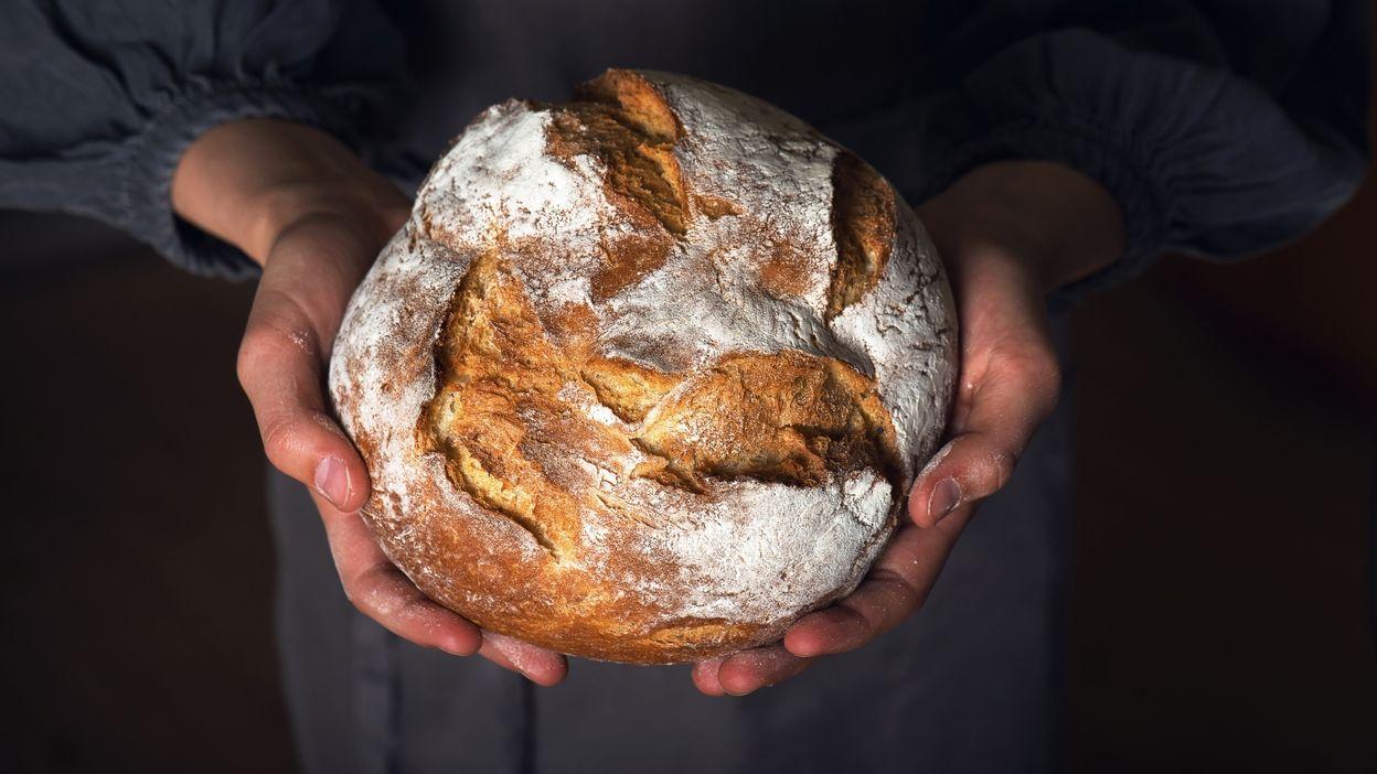 Le pain... L'aliment à succès de nos familles !
