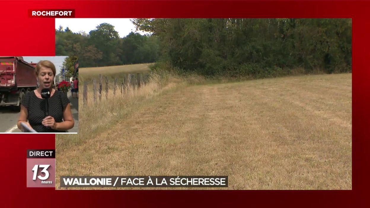 Wallonie : face à la sécheresse