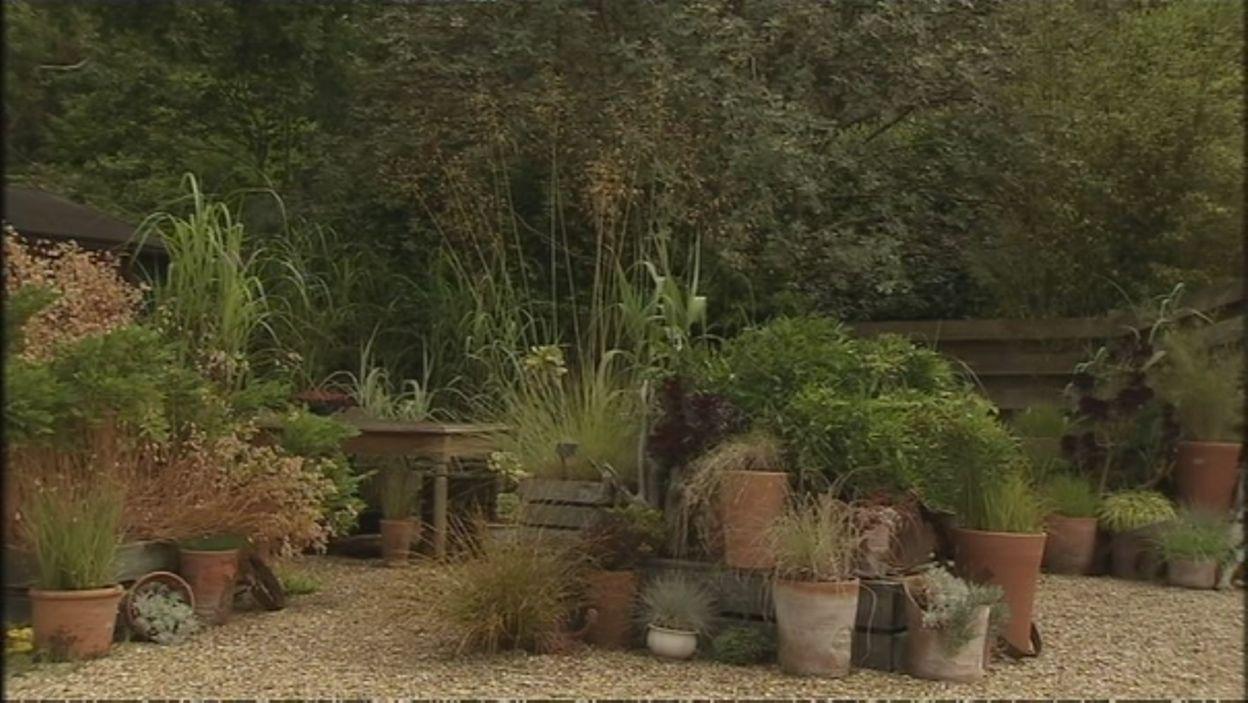 Knoll gardens dans le Dorset - la pépinière/jardin de démonstration
