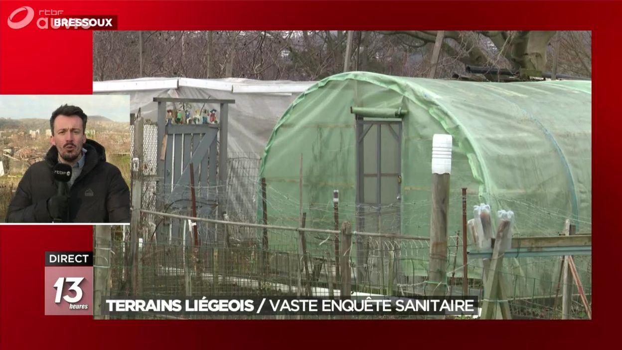 Terrains liégeois : un potager collectif pollué, les résultats de l'enquête