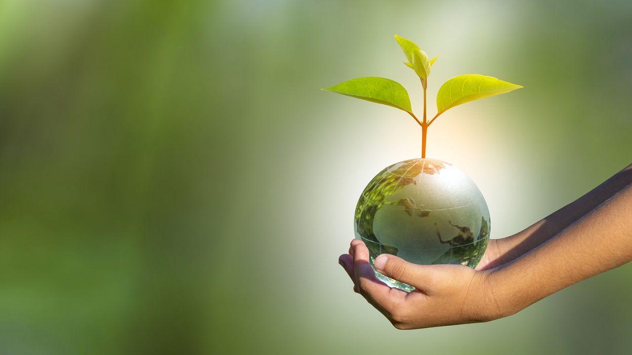 Coup de projecteur sur les défis agricoles et alimentaires mondiaux avec le Festival Alimenterre