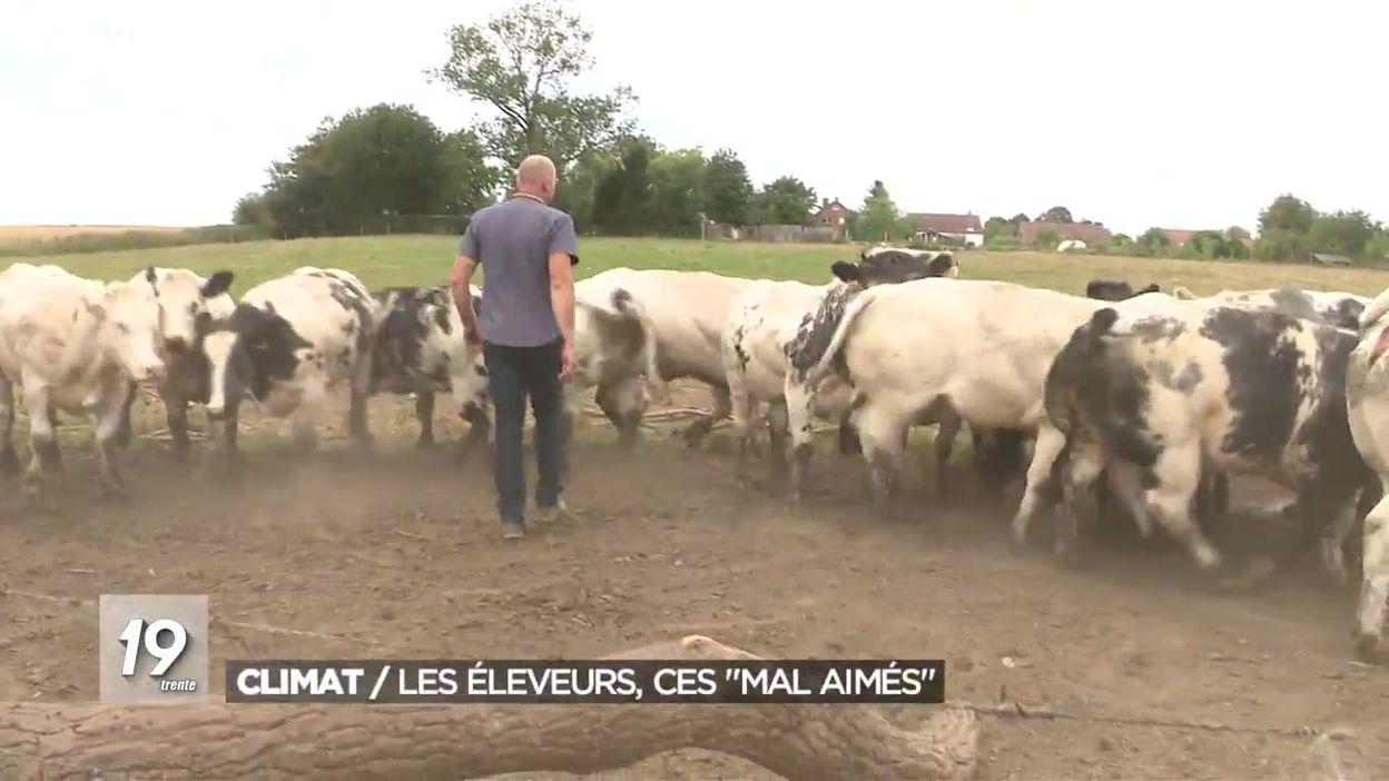 Climat : les éleveurs, ces mal aimés