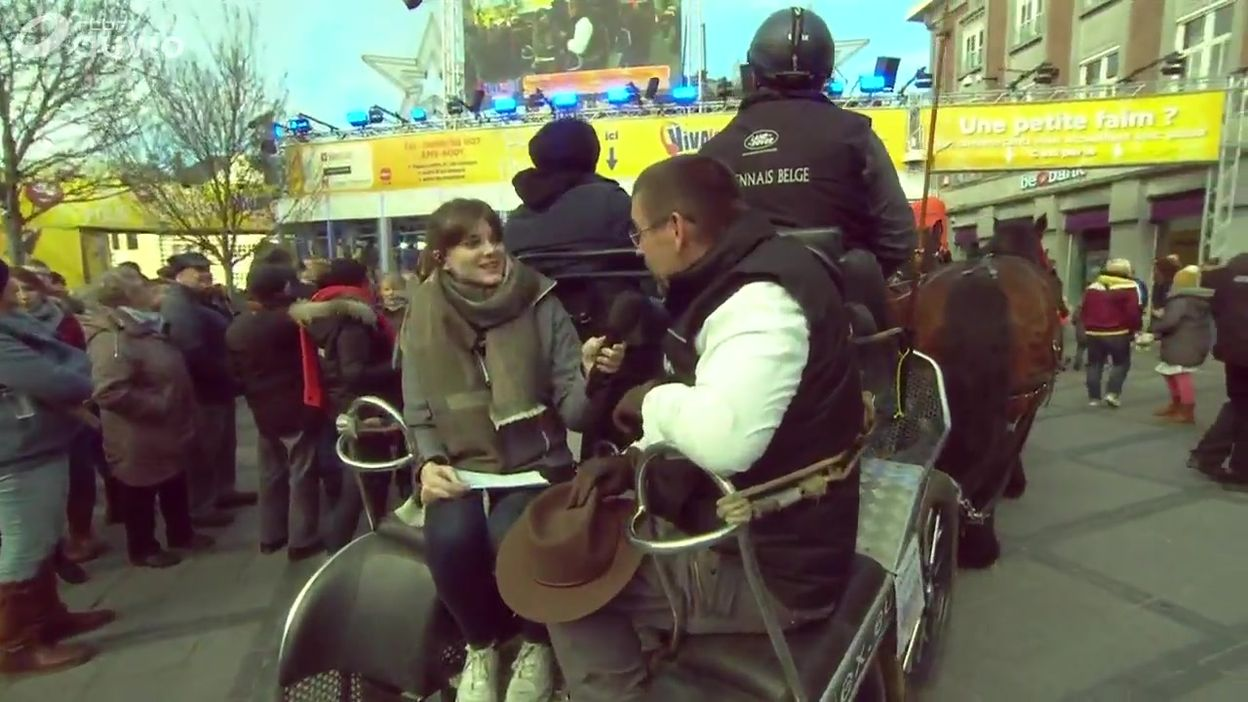 Un défi d'endurance pour les Ardennais belges à cheval de trait