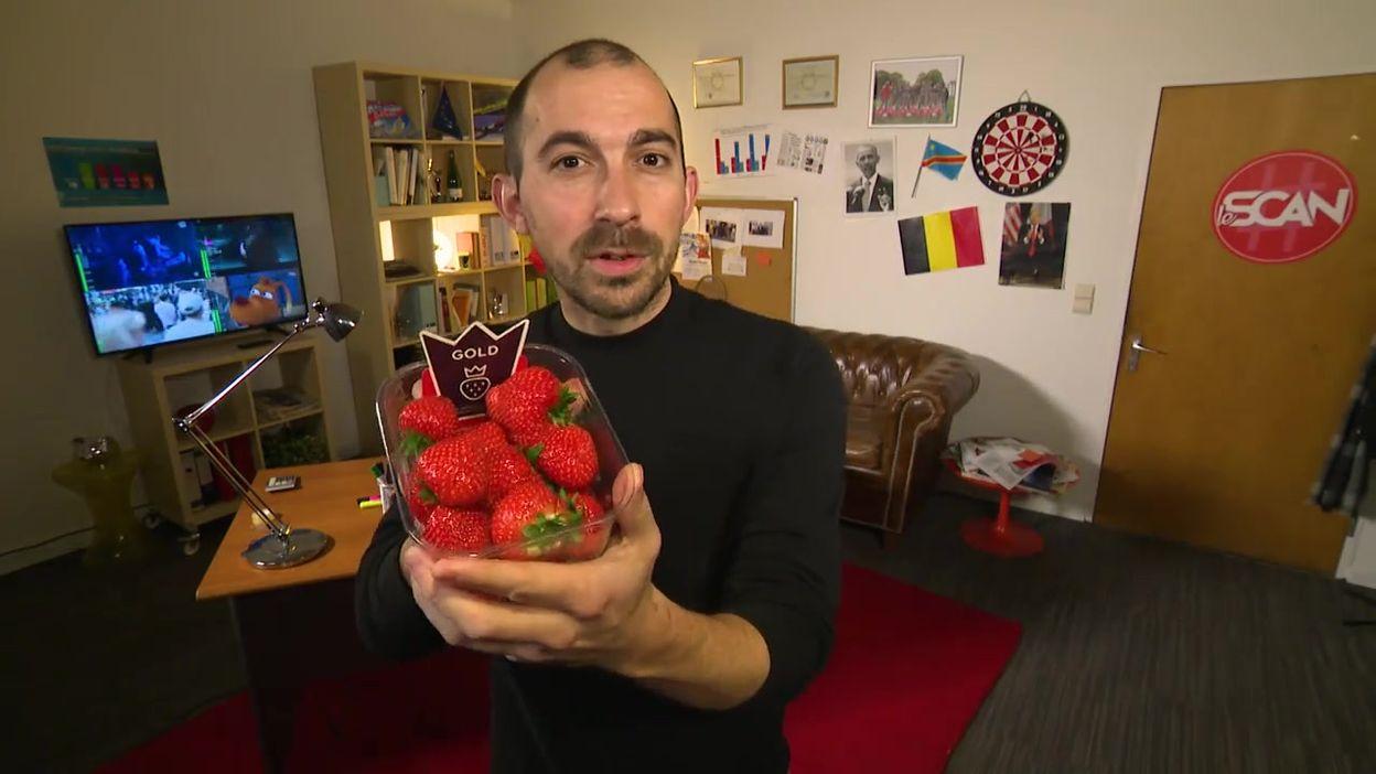 Le Scan : quel coût énergétique pour les fraises en hiver ?