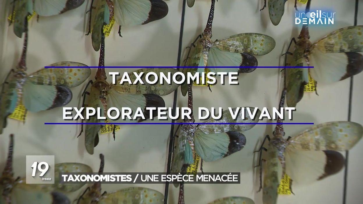 À la recherche des taxonomistes