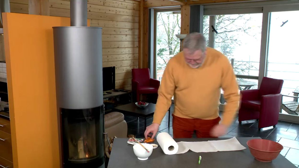 Tapis de semis pour le potager en pot
