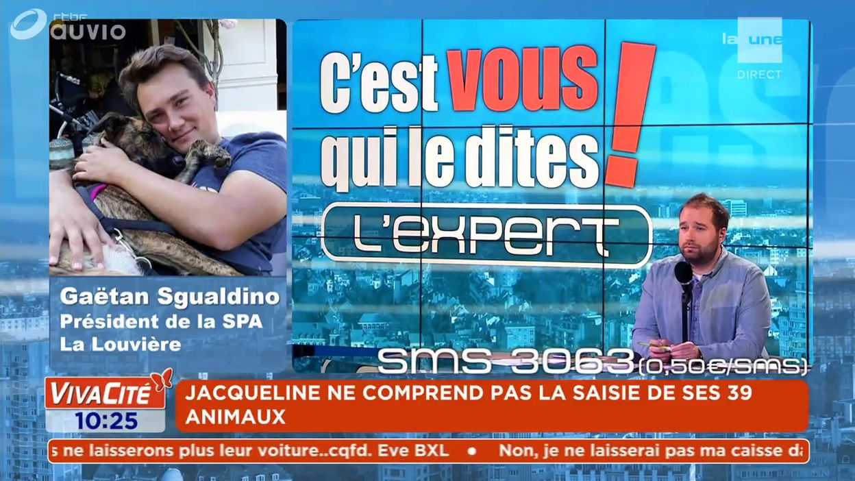 L'expert du débat : Gaëtan Sgualdino - Président de la SPA La Louvière