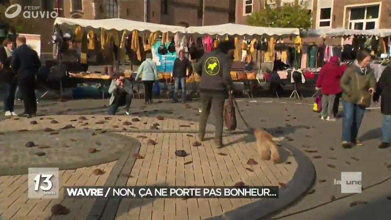 Expérience : des fausses crottes de chiens sur le marché de Wavre