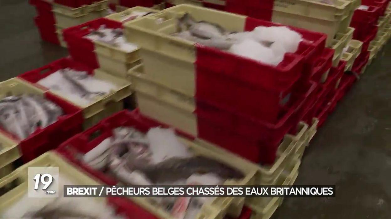 Brexit: pêcheurs belges chassés des eaux britanniques