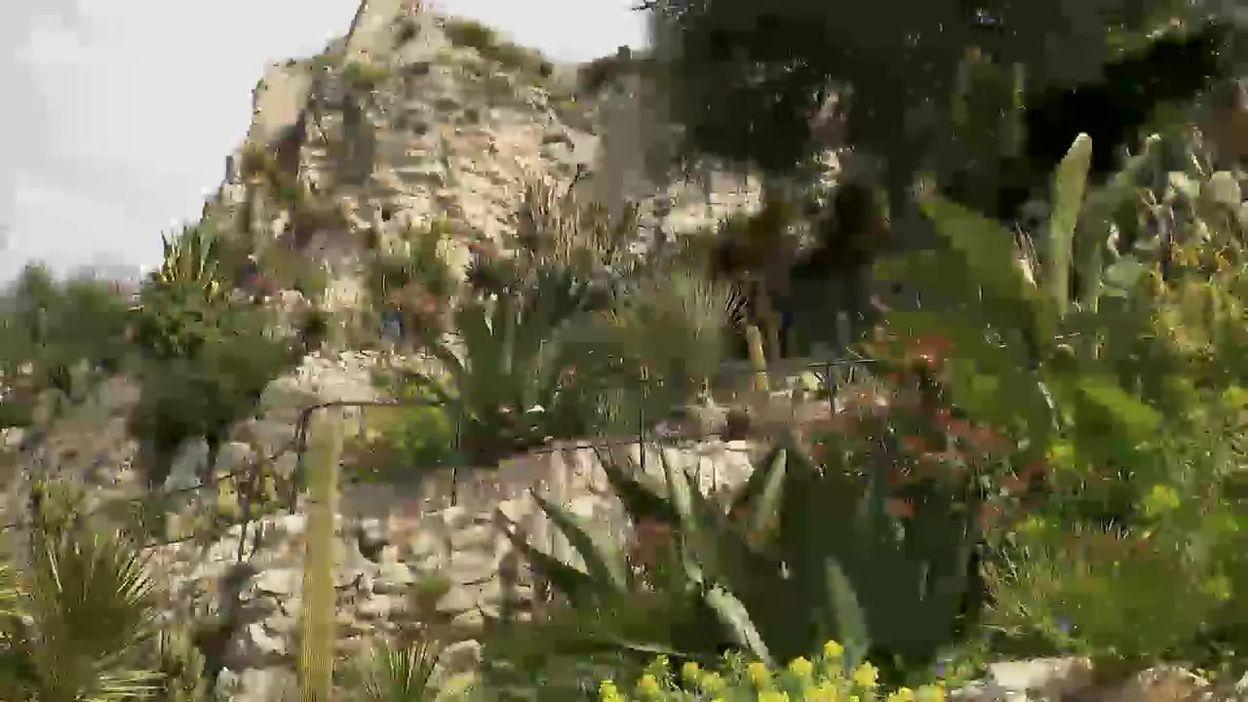 Le Jardin exotique d'Èze, un paradis terrestre surplombant la Méditerranée