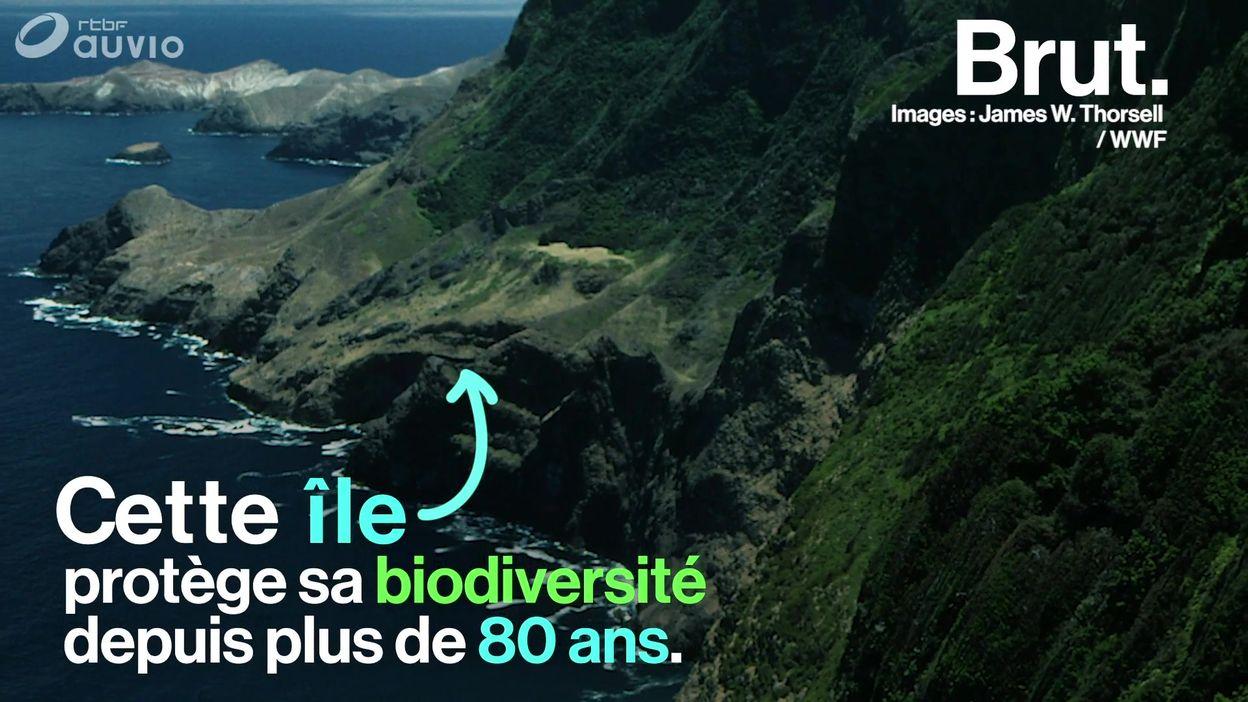 L'archipel Juan Fernández, terre de Robinson Crusoé, protège son écosystème