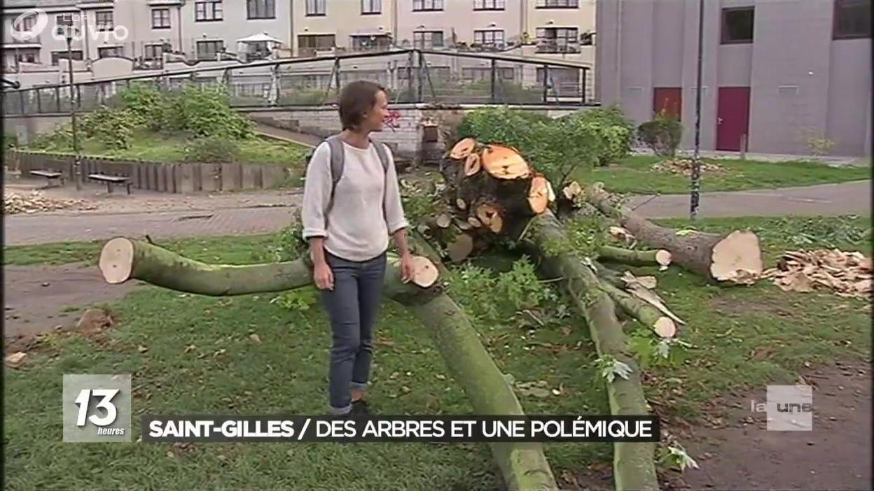 Mobilisation à Saint-Gilles pour sauver des arbres