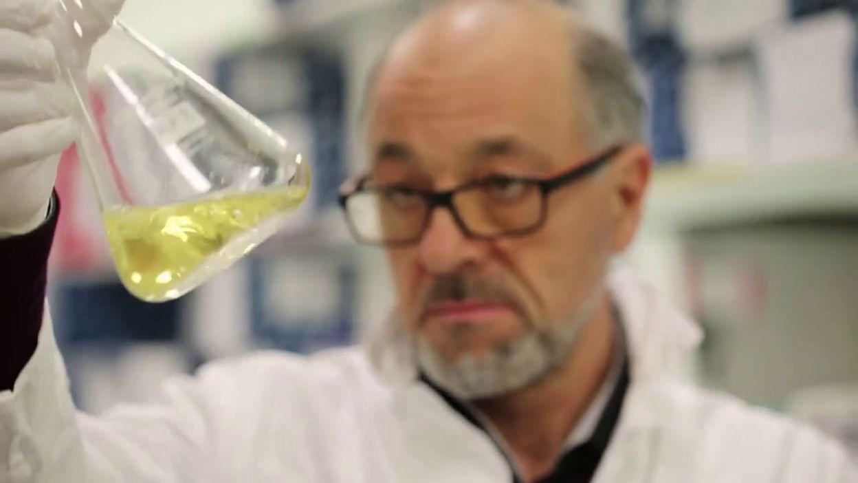 Du foie naturellement gras grâce à des bactéries