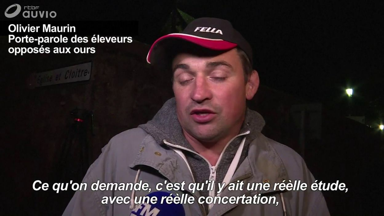 Réintroduction de l'ours dans les Pyrénées : réaction d'un opposant au projet