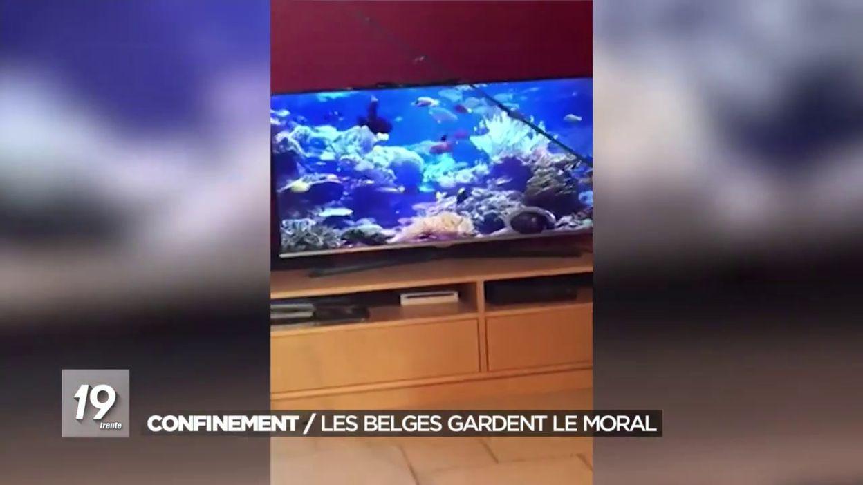 Les vidéos partagées des Belges en confinement
