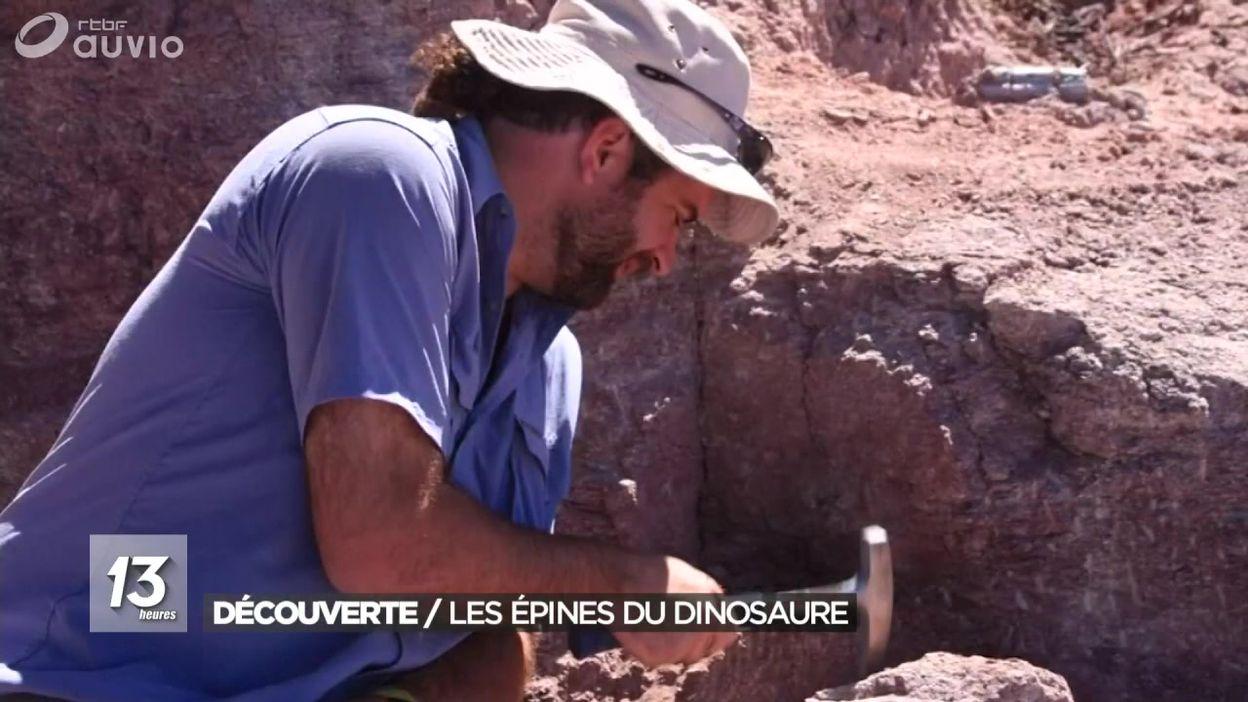 Une nouvelle espèce de dinosaure découverte en Argentine