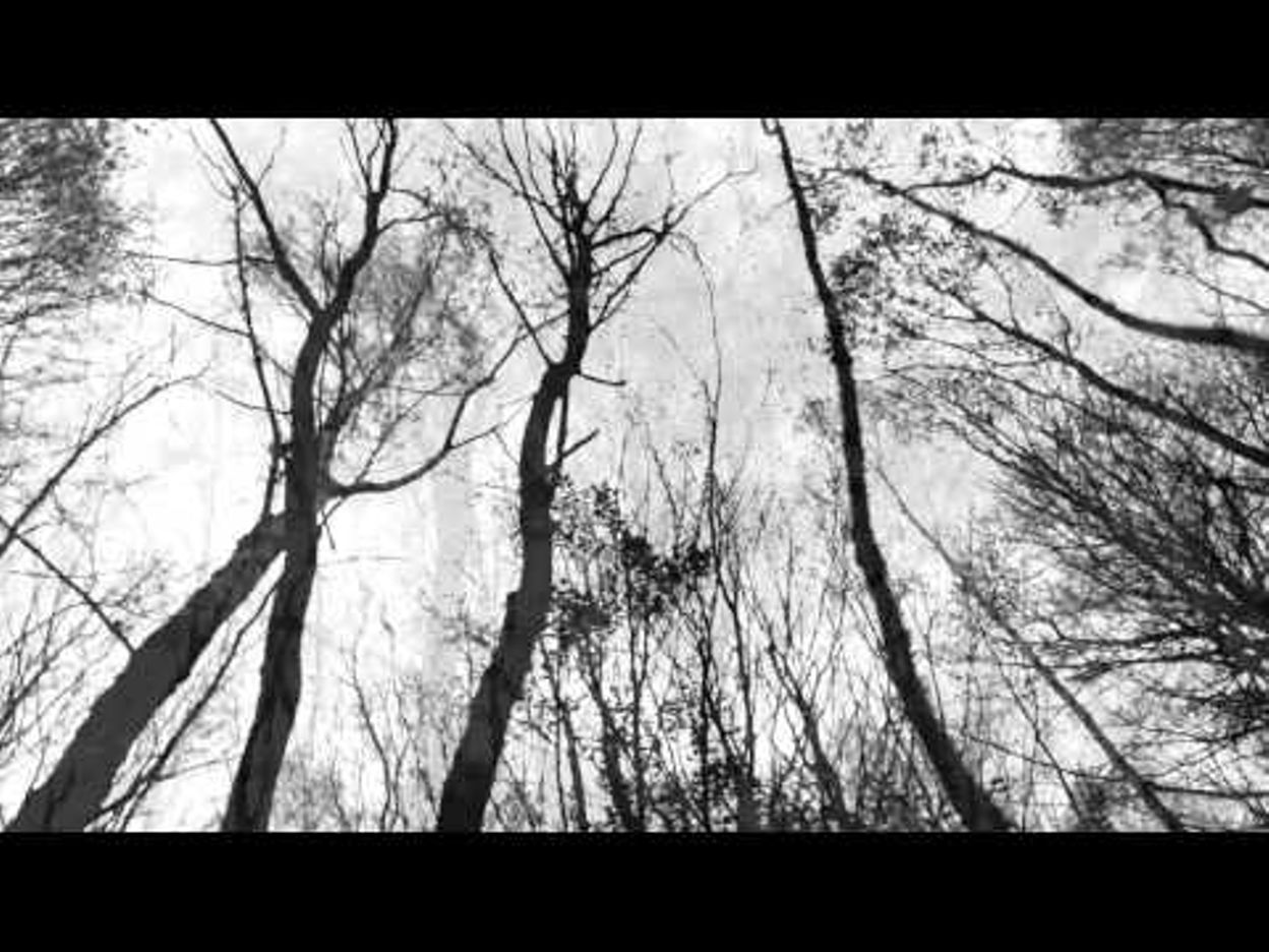 BATHERNAY - 'Winter Will Be Back'