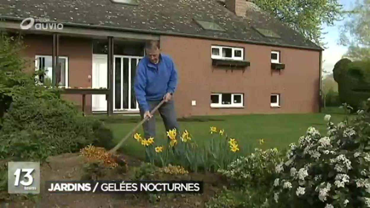 Retour du brouillard et du gel que faire dans les jardins for Combattre les moustiques dans le jardin