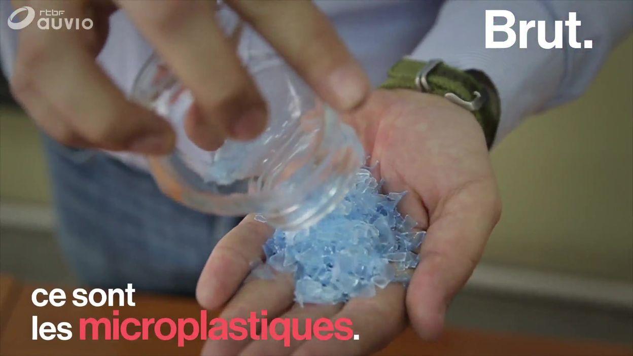 La chaîne alimentaire humaine polluée par les microplastiques