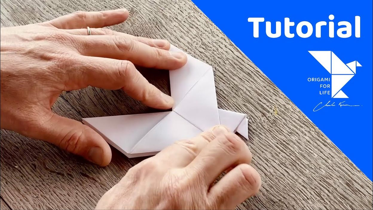 Origami For Life: Tutorial