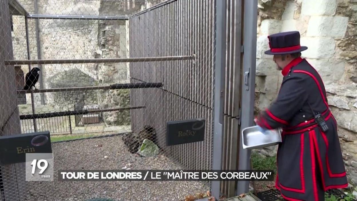 Légende : le maître des corbeaux de la Tour de Londres