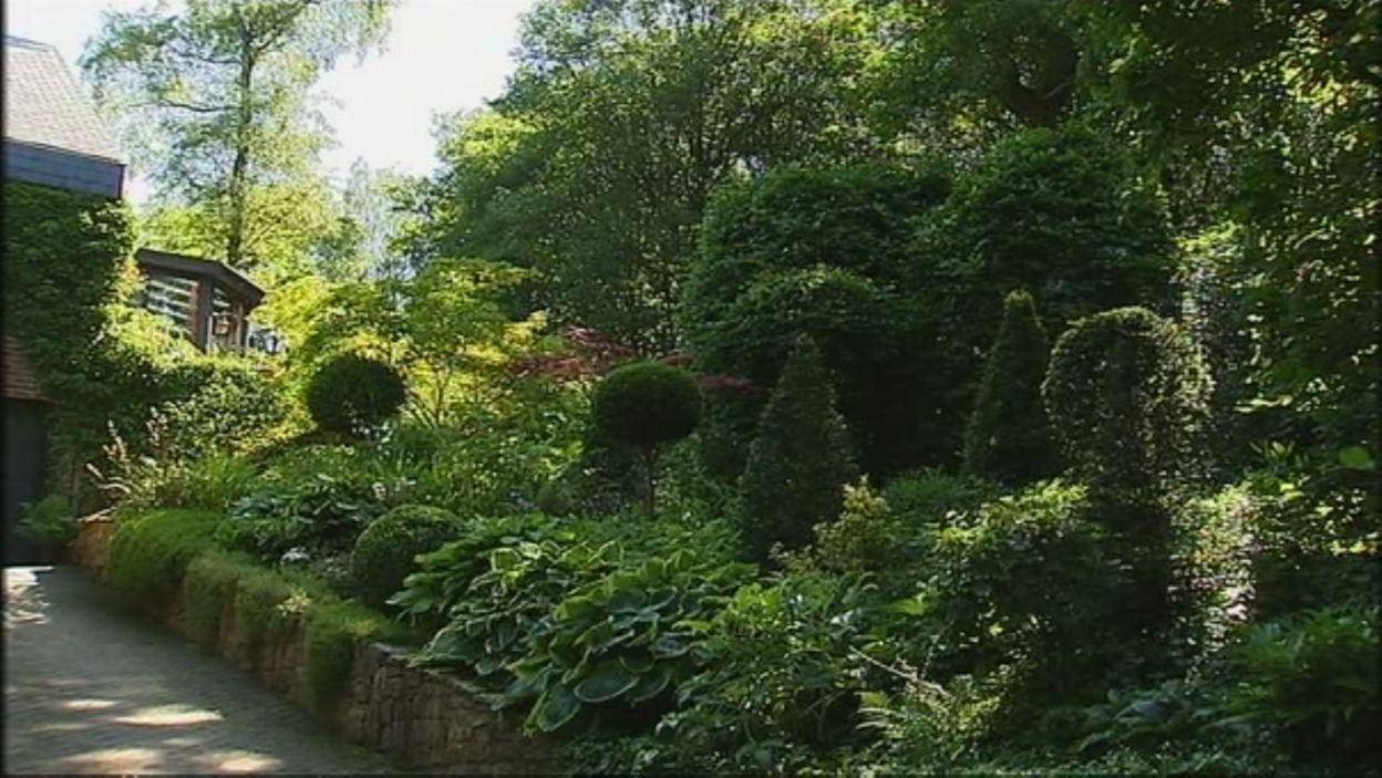le jardin de colette et paul l 39 ombre des grands pins extrait de l 39 mission jardins et. Black Bedroom Furniture Sets. Home Design Ideas
