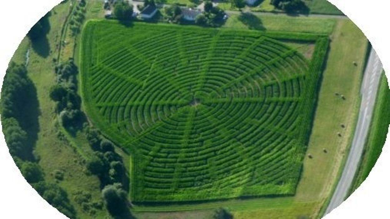 Le Labyrinthe de Maïs de Montmédy a 10 ans !